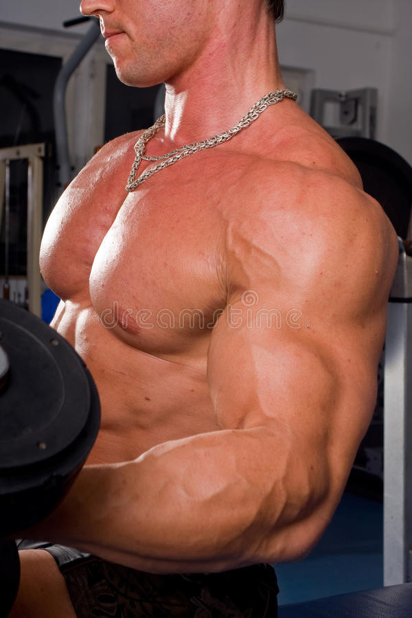 Bodybuildertraining lizenzfreie stockfotos