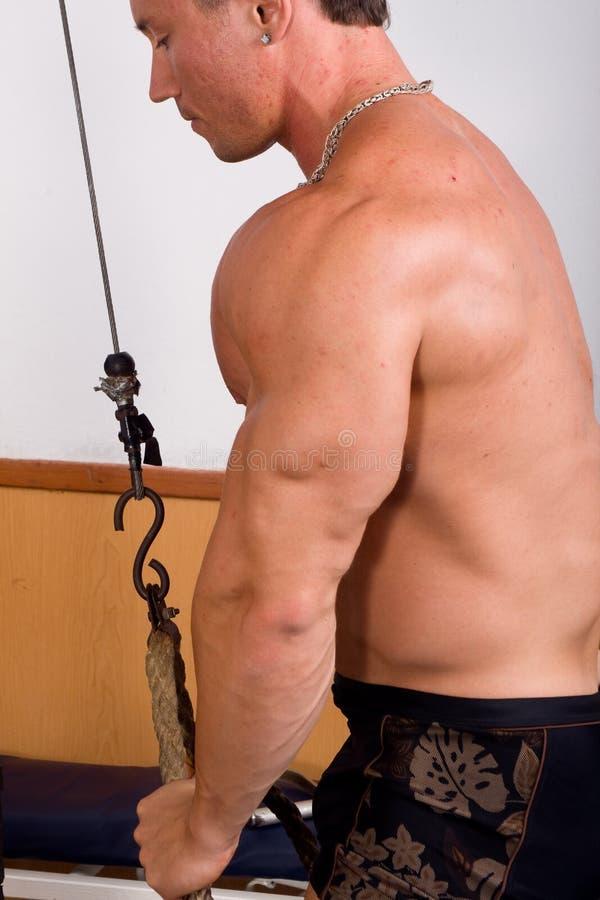 Bodybuildertraining stockfotos