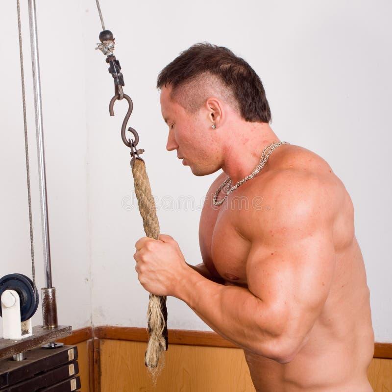 Bodybuildertraining lizenzfreies stockfoto