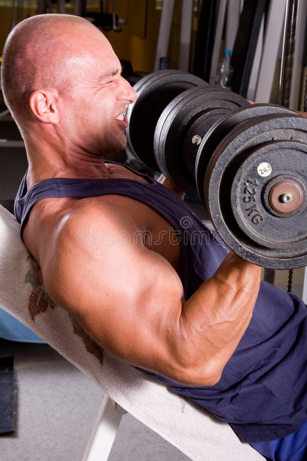 Bodybuildertraining lizenzfreie stockfotografie