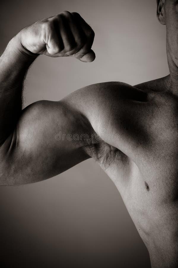 Bodybuilding imagen de archivo
