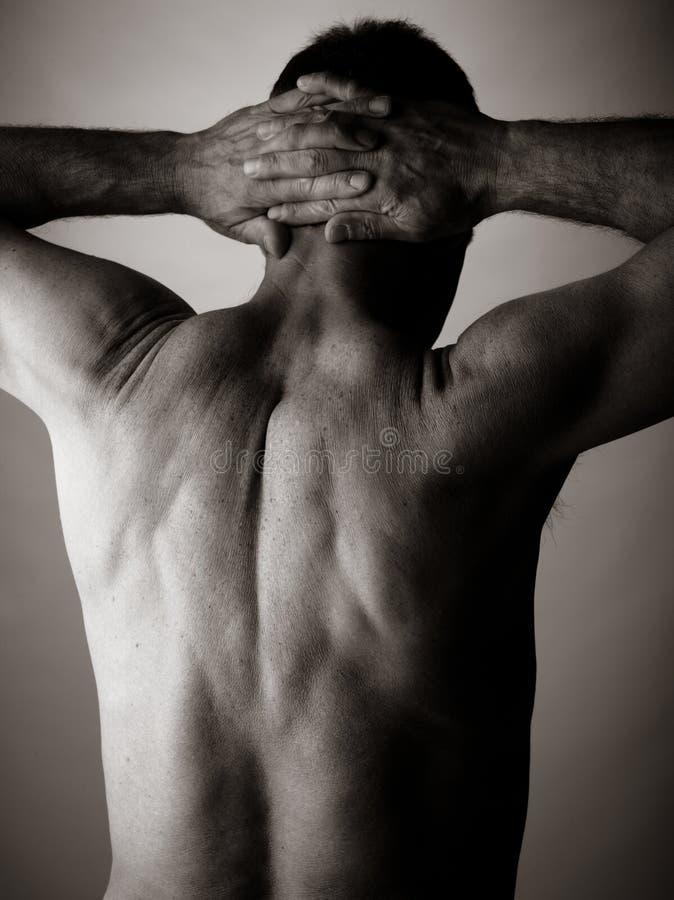 Bodybuilding stockfotografie