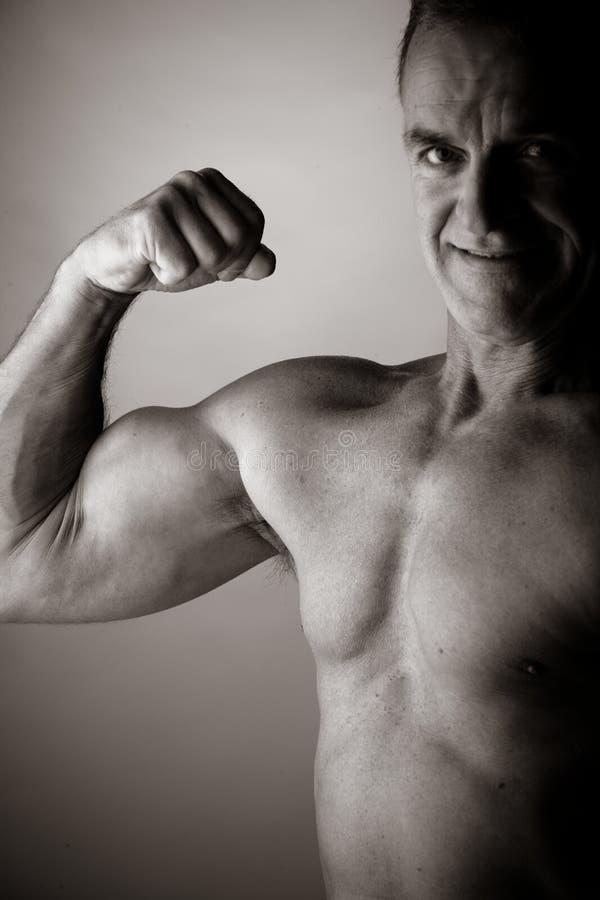 Bodybuilding fotos de archivo