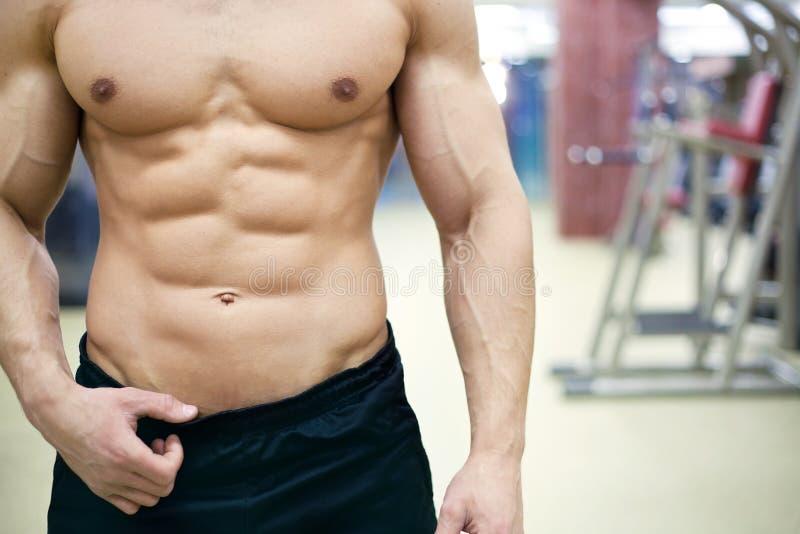 Bodybuilding royaltyfri bild
