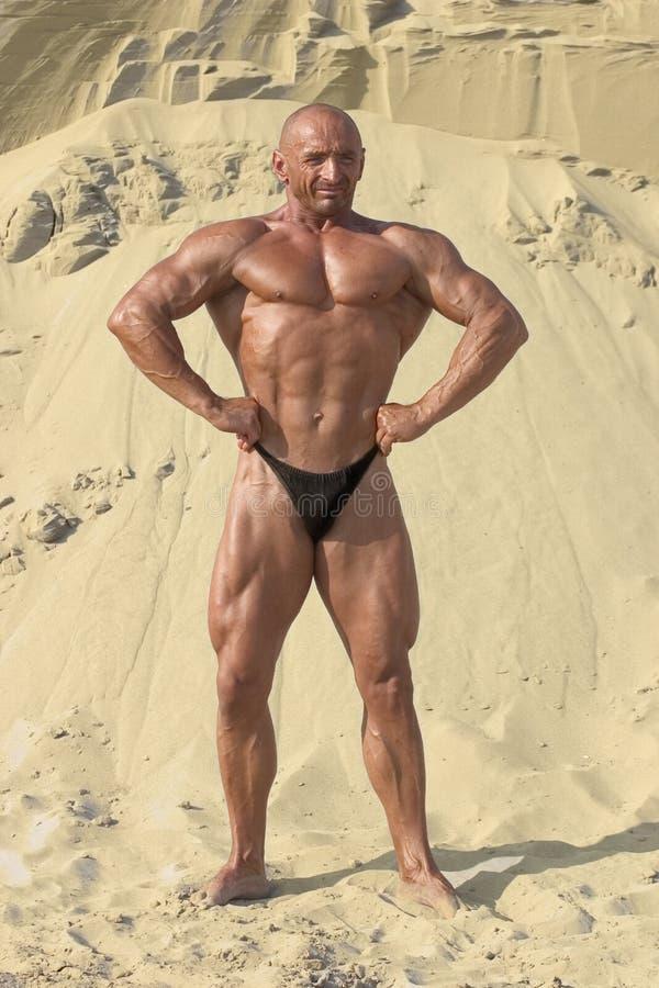 Bodybuilding lizenzfreie stockfotografie
