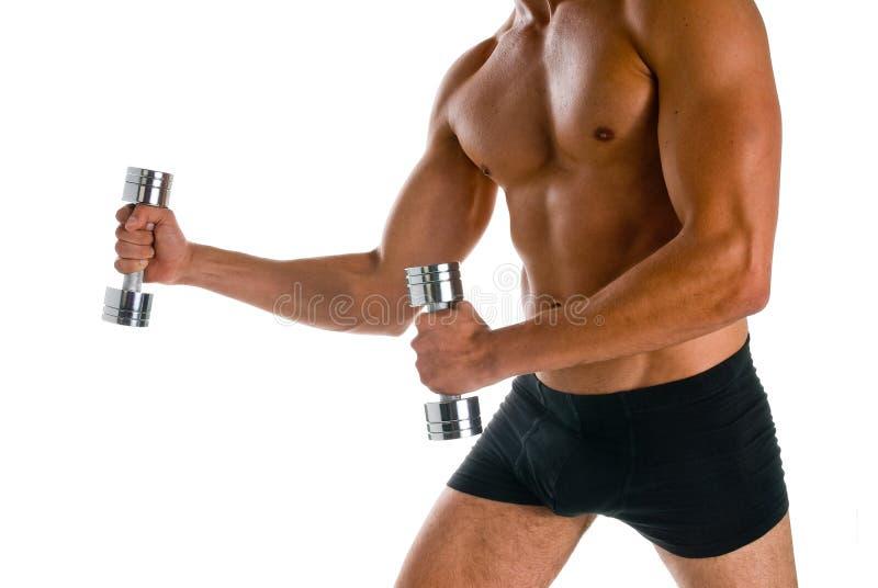 Bodybuilding foto de archivo libre de regalías