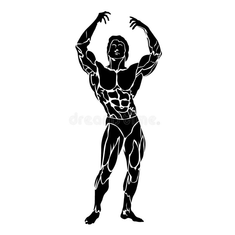 Bodybuilding and fitness concept, flexing muscles, vector illustration. Vector illustration of posing bodybuilder vector illustration