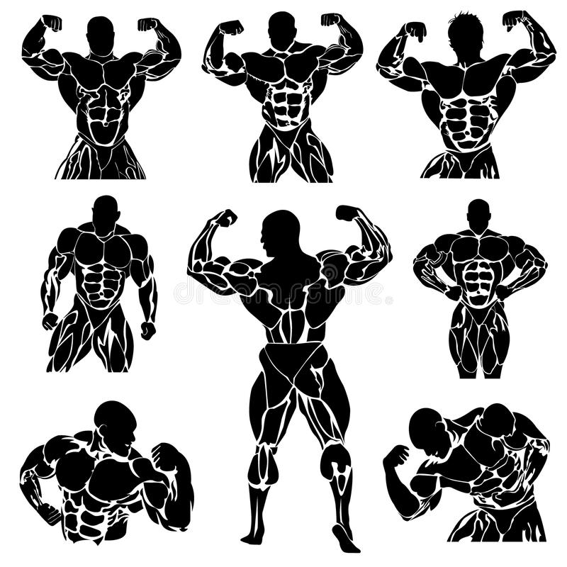 Bodybuilding, Powerlifting, Vektor, Satz stock abbildung