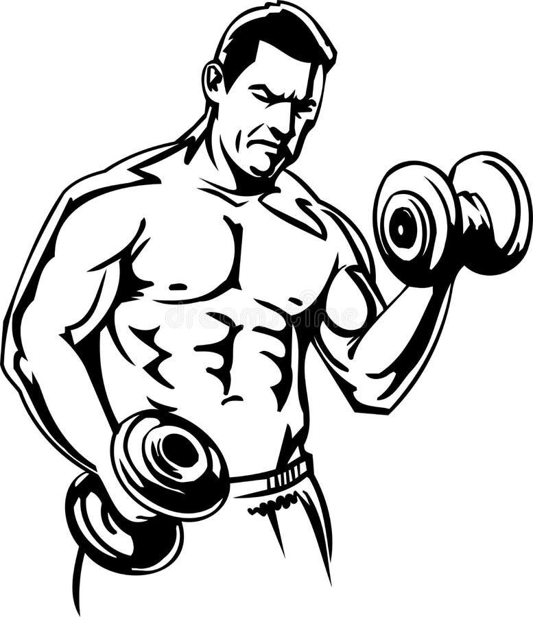 Bodybuilding und Powerlifting - Vektor. vektor abbildung