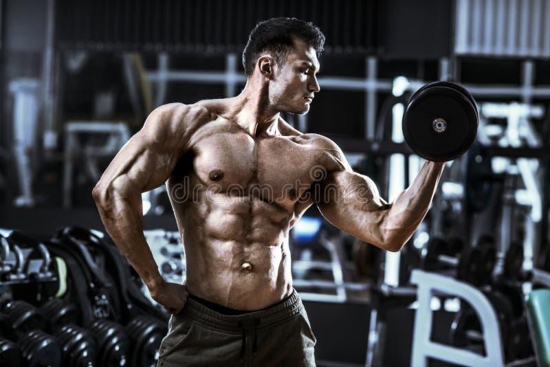Bodybuilding. Very power athletic guy , execute exercise with dumbbells, inside gym, horizontal photo stock photos