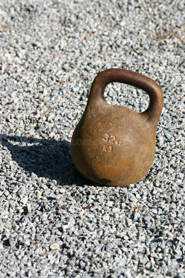 bodybuildingryss royaltyfri bild