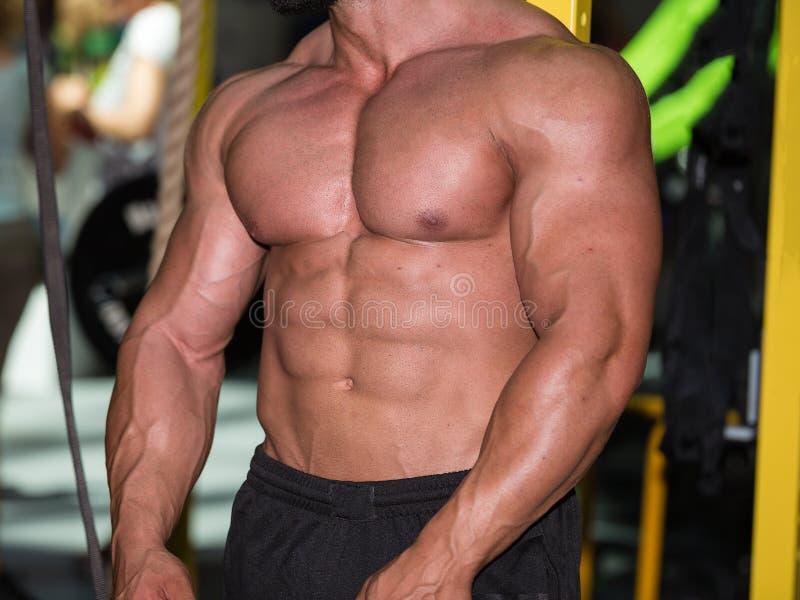 Bodybuildingsconcept: Sterke Bodybuilder met Perfecte Abs, Schouders, Bicepsen, Triceps en Borst stock foto