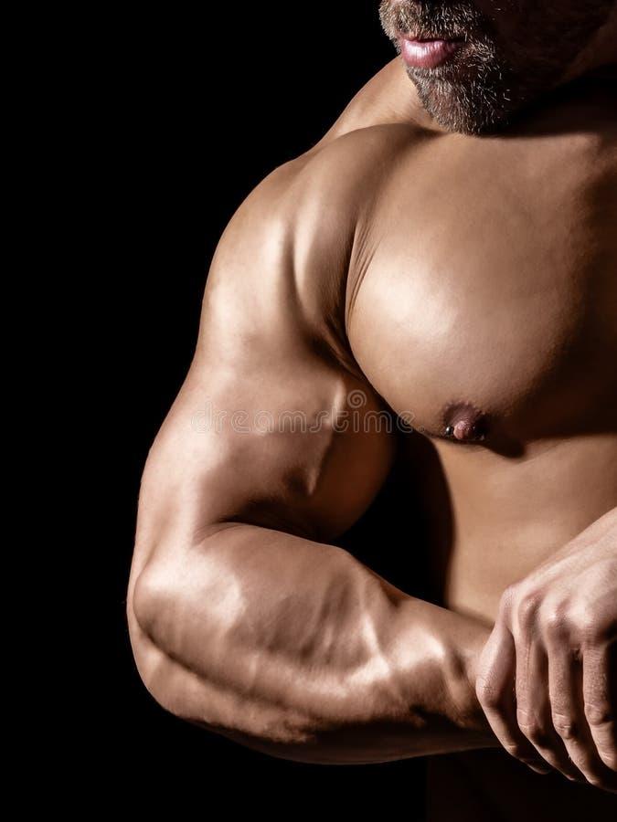 Bodybuildingsmens stock fotografie