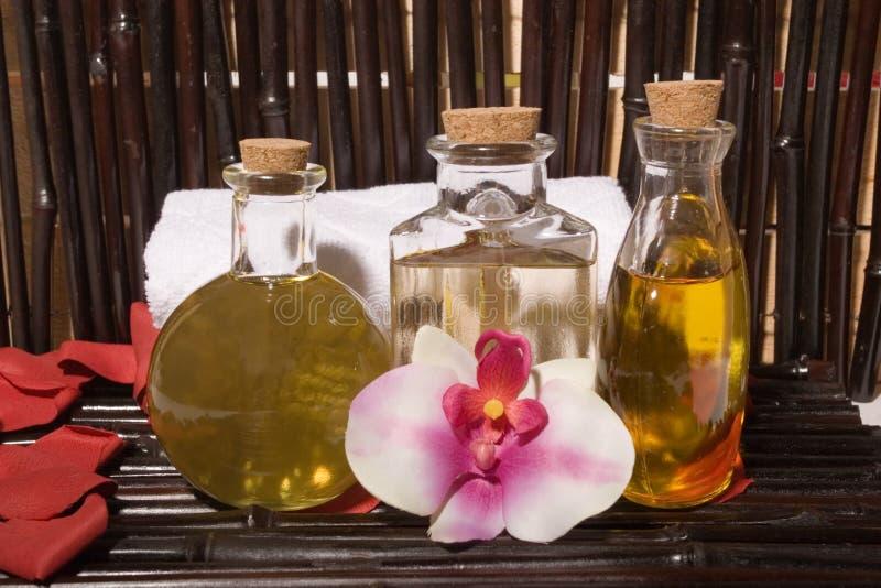 Download Bodycare massage items stock photo. Image of bottle, retreat - 5392876