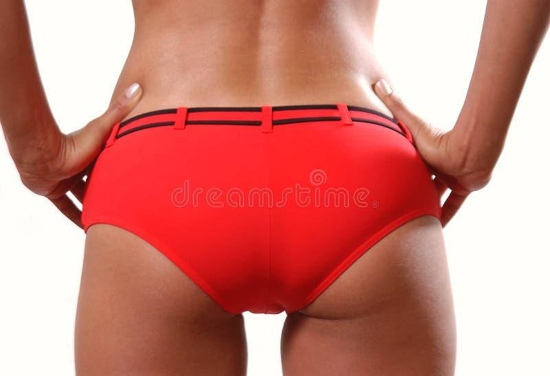 Download Bodyshot stock photo. Image of summer, sensual, lingerie - 151078