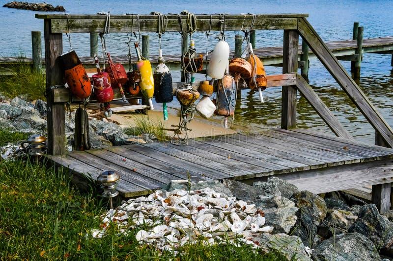 Boe e conchiglie di ostrica perse e trovate fotografie stock