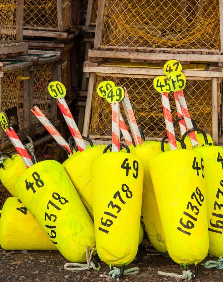 Download Boe gialle immagine stock. Immagine di pesca, isola, apparecchiatura - 30827409