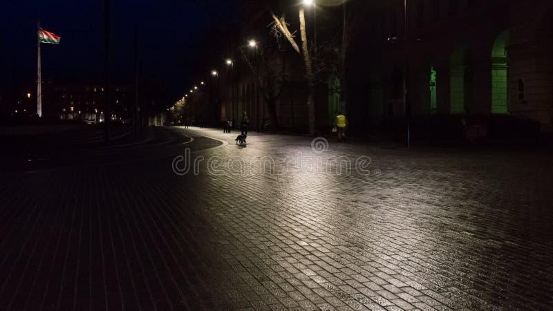 Boedapest Hongarije 03 15 2019 Hongaarse vlag bij nacht in Kossuth-Vierkant royalty-vrije stock afbeeldingen