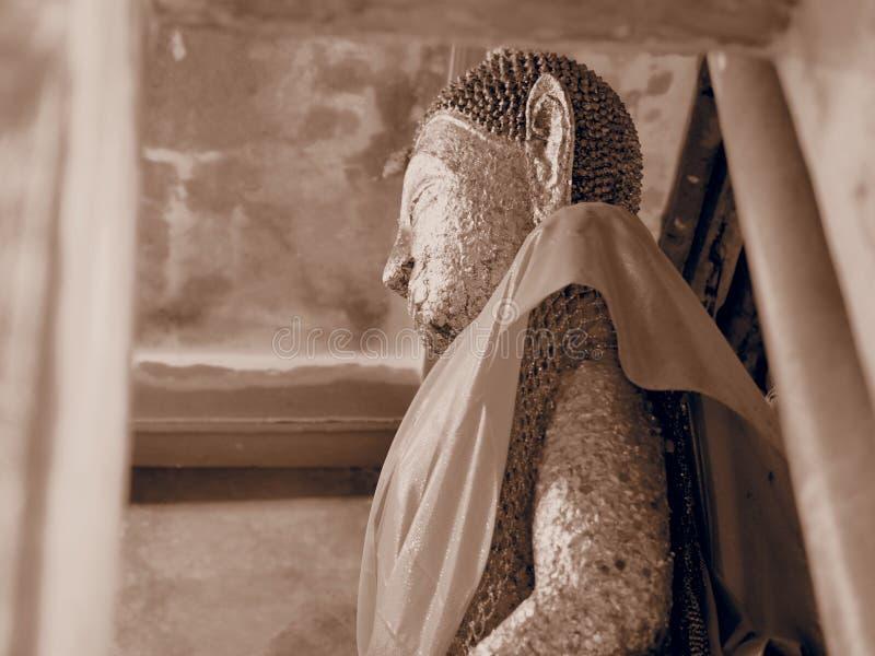 Boeddhistische meditatie stock foto's