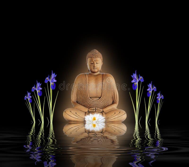 Boedha in Tuin Zen royalty-vrije stock foto's