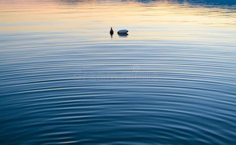 Boei in het water royalty-vrije stock fotografie