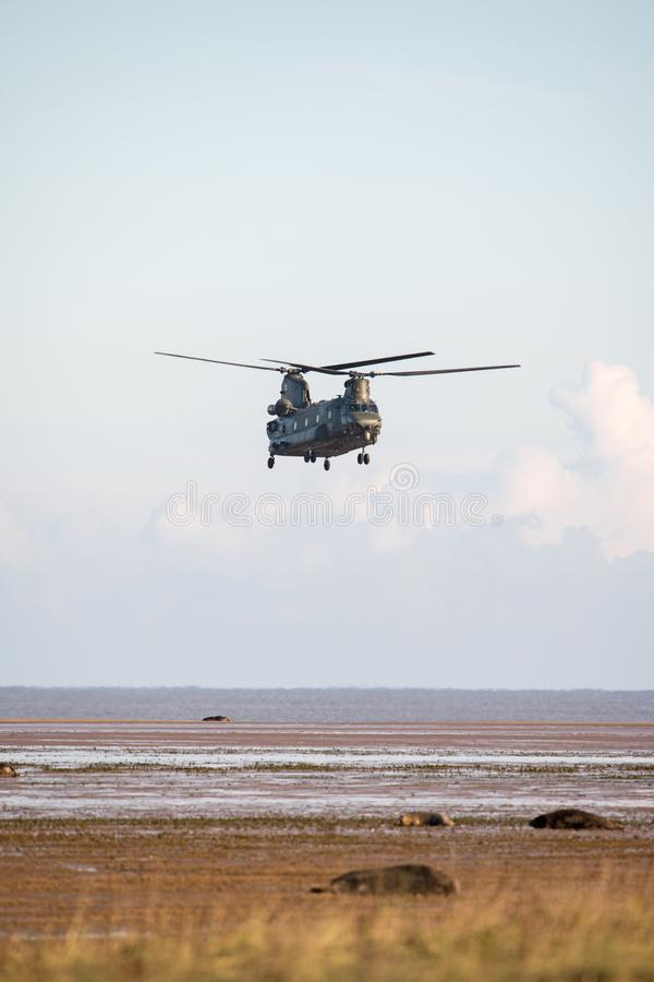 Boeing CH-47 Chinook photo libre de droits