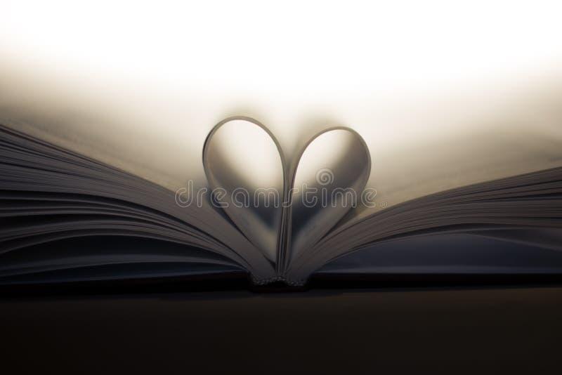 Boek met hart royalty-vrije stock afbeelding