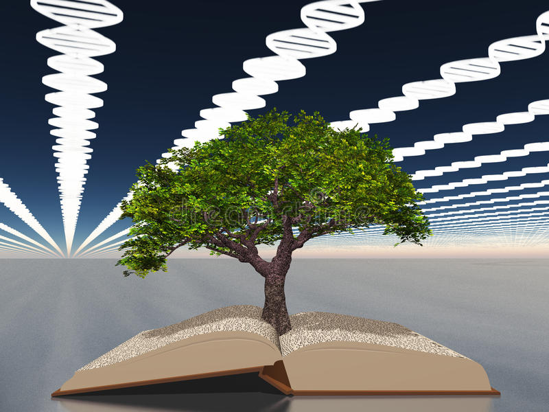 Boek van het leven met boom van het leven vector illustratie