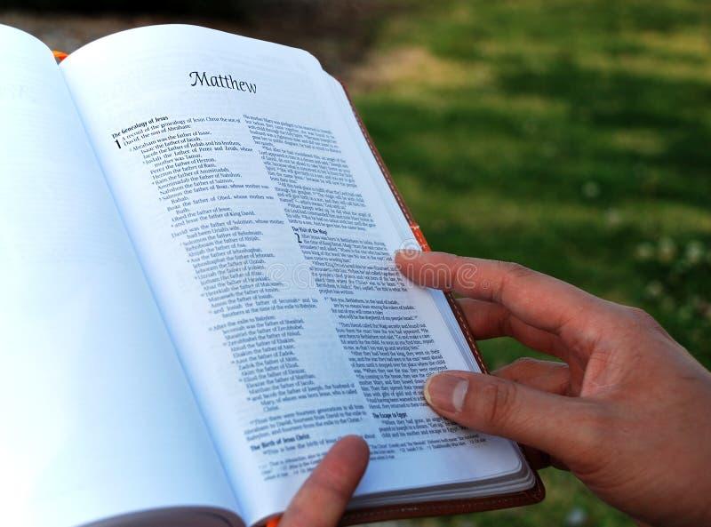 Boek van Matthew - lezingsbijbel stock foto