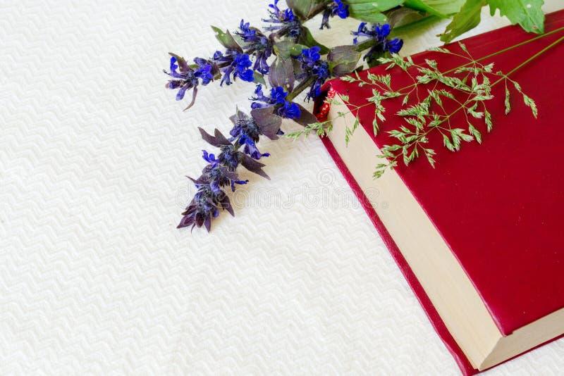 Boek van rode kleur met gebiedsbloemen op een witte achtergrond Met exemplaarruimte royalty-vrije stock foto