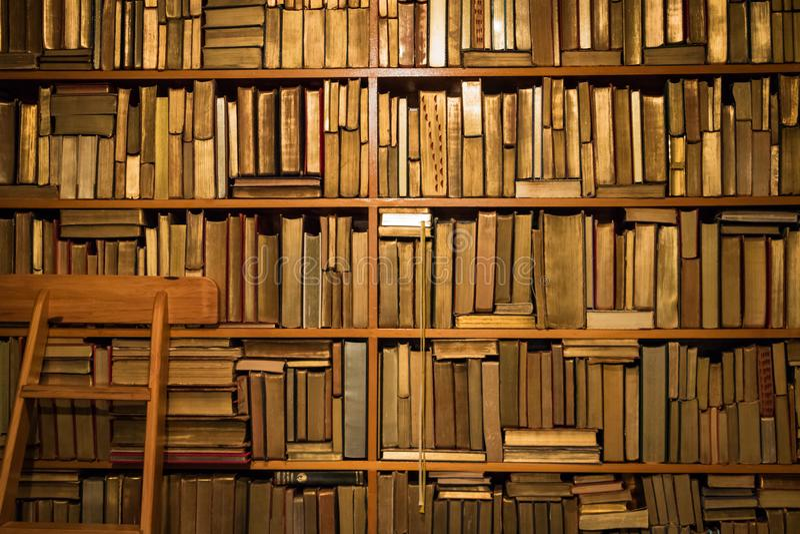 Boeken op plank met ladder stock foto