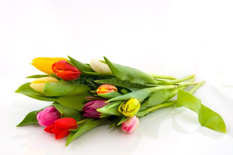 Boeket gekleurde tulpen stock foto