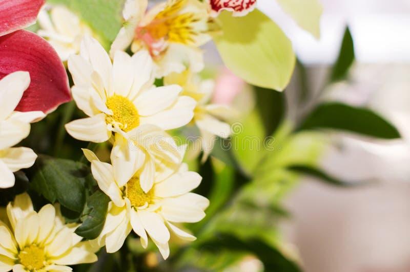 Boeket met diverse mooie bloemen stock foto's