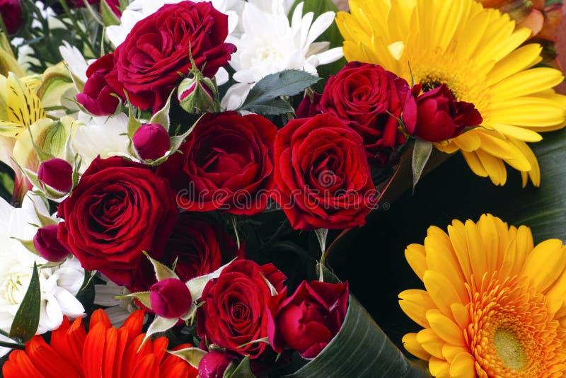 Boeket met donkerrode rozen, Ñ  hrysanthemums en gerberas stock afbeeldingen