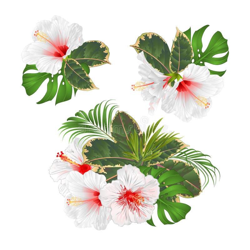 Boeket met tropische bloemen geplaatst bloemenregeling met mooie witte hibiscuspalm, philodendron en ficus uitstekende vector royalty-vrije illustratie