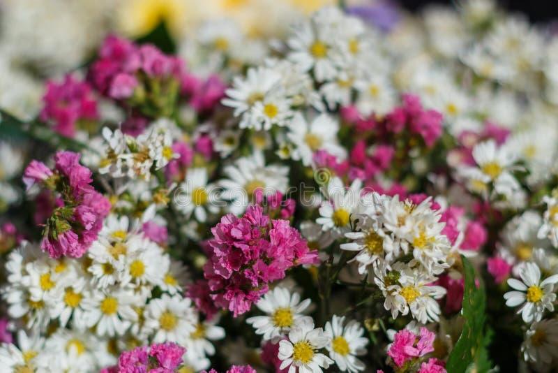 Boeket van bloemen, Boeket, bloemen stock afbeelding