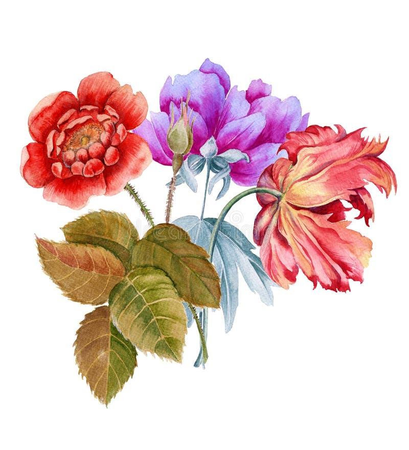 Boeket van bloemen De illustratie van de Batanicwaterverf stock afbeeldingen