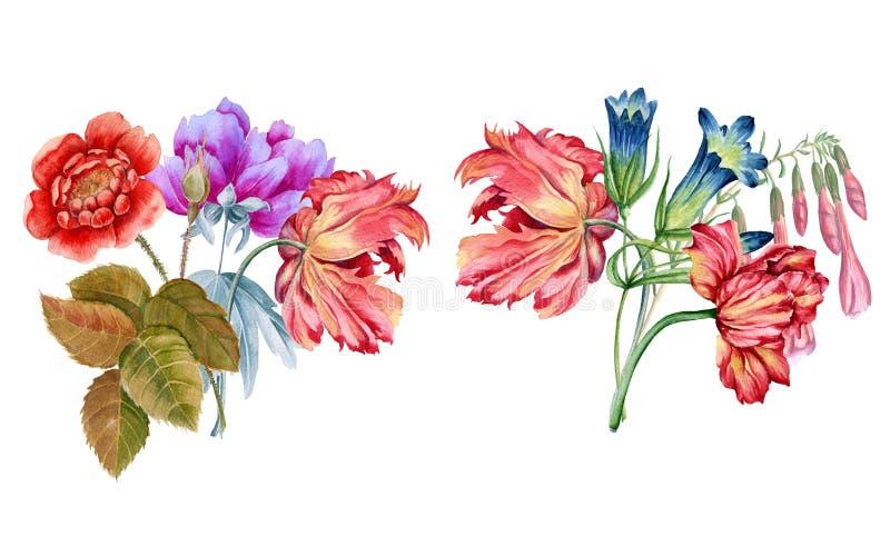 Boeket van bloemen De illustratie van de Batanicwaterverf stock foto's