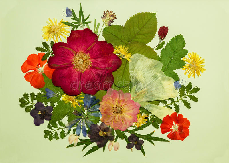 Boeket van bloemen op een lichte achtergrond Beeld van droge flowe royalty-vrije stock foto's