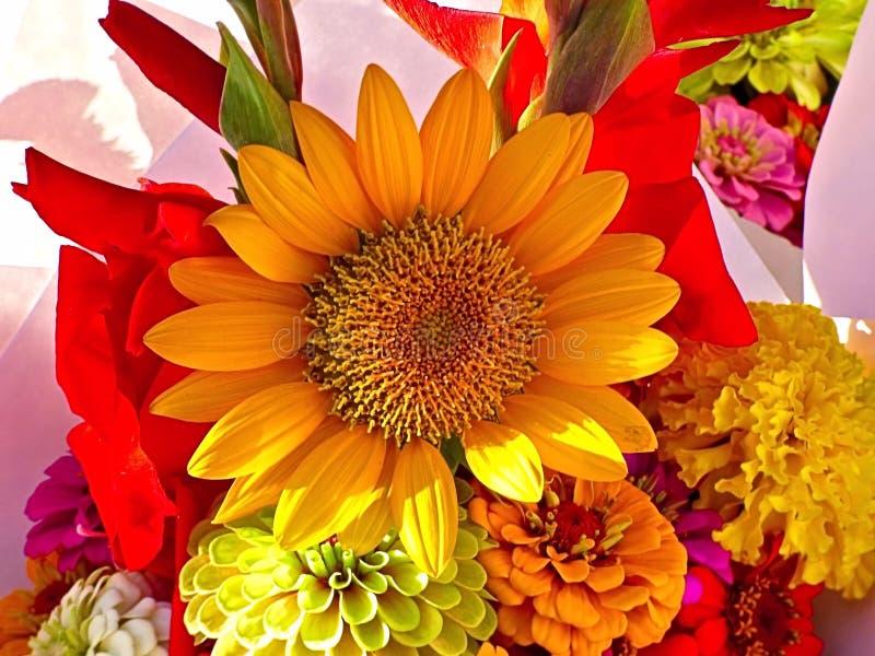 Boeket van bloemen op vertoning royalty-vrije stock fotografie