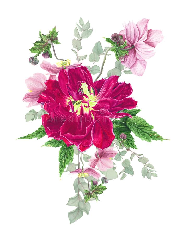Boeket van bloemen: tulp, anemonen en eucalyptus vector illustratie