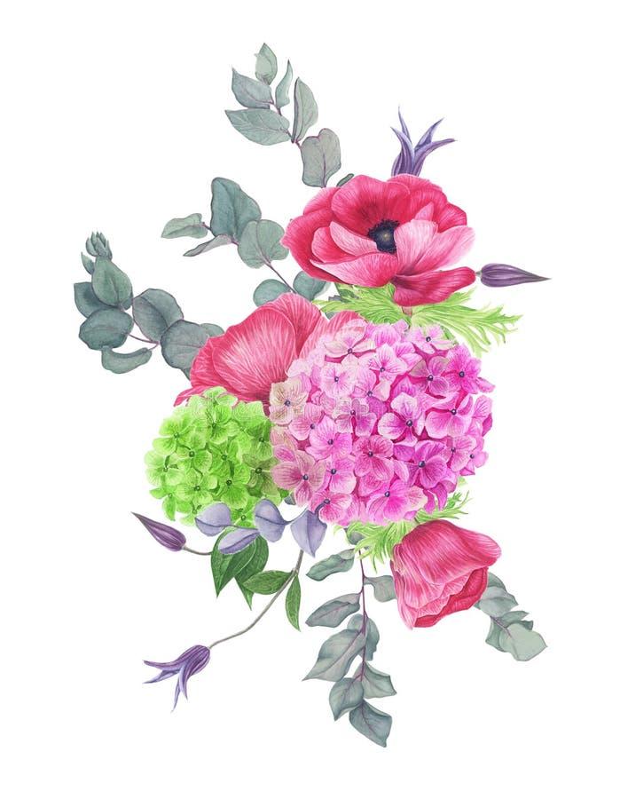 Boeket van bloemen, waterverf het schilderen Hydrangea hortensia, clematissen, eucalyptus en anemonen stock illustratie