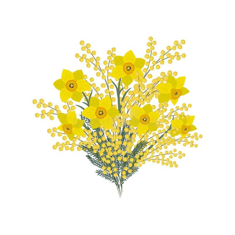 Boeket van daffodills en mimosa op een witte achtergrond De lente gele bloemen royalty-vrije illustratie