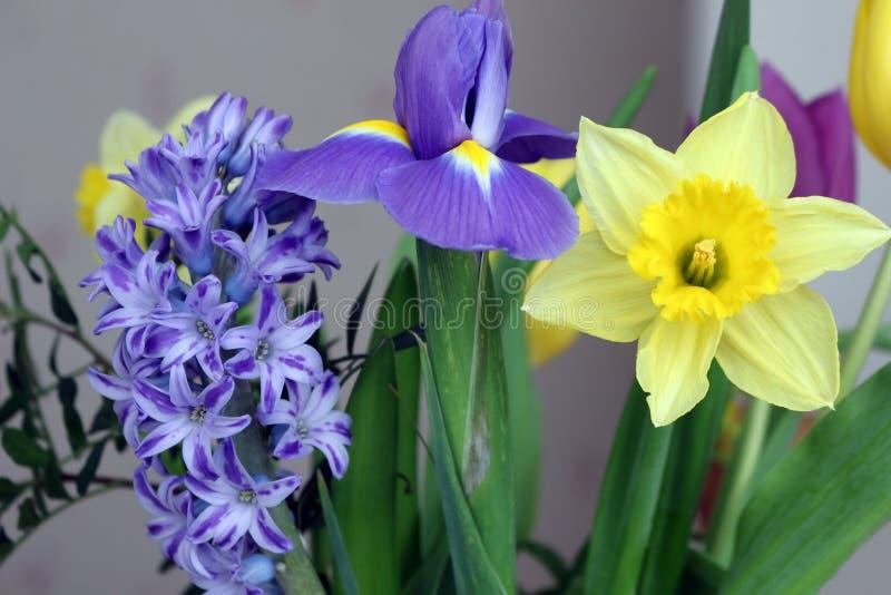 Boeket van de lentebloemen stock afbeelding