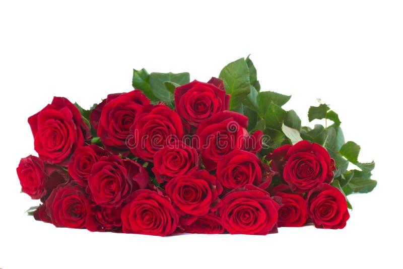 Boeket van donkerrode rozen royalty-vrije stock afbeelding