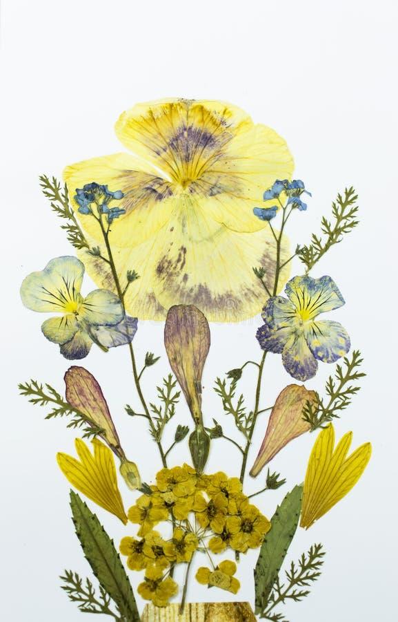 Boeket van droge bloemen stock foto