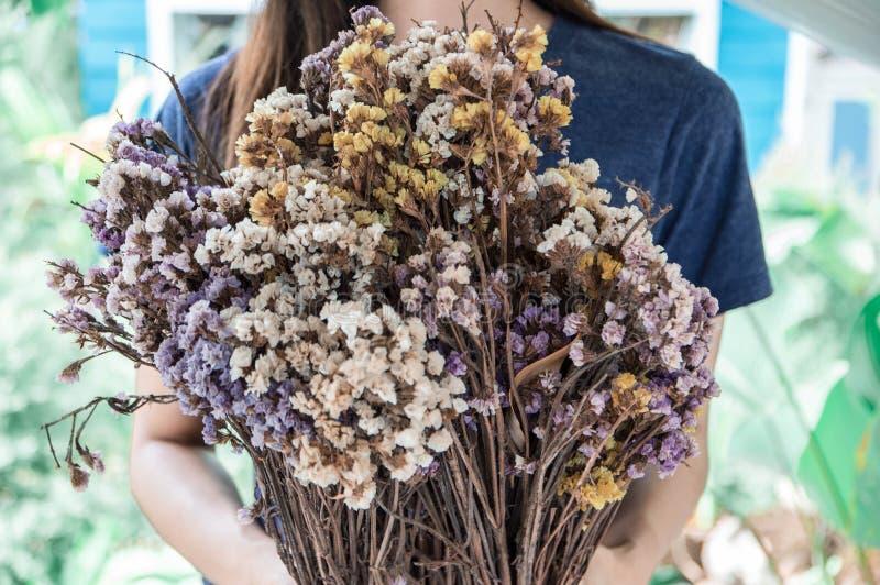 Boeket van droge bloemen in jonge vrouwenhanden royalty-vrije stock foto