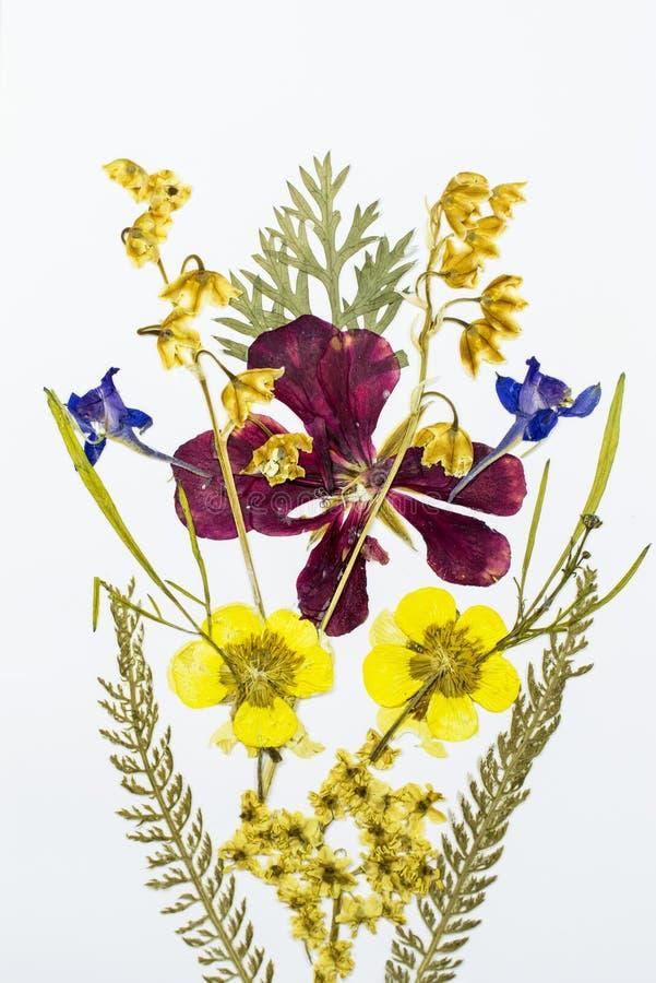 Boeket van droge en gedrukte bloemen royalty-vrije stock afbeelding