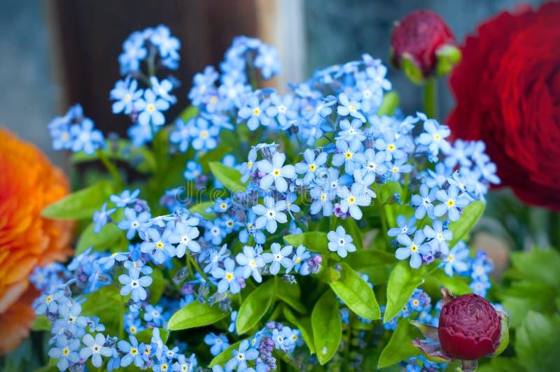 Boeket van Forget me niet en Perzische boterbloemenflowersranunculus stock afbeelding