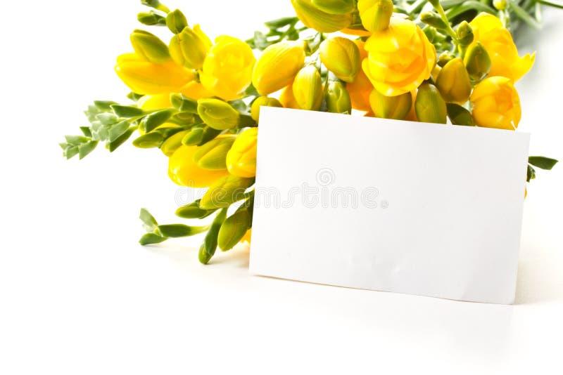 Boeket van gele bloemen royalty-vrije stock foto's